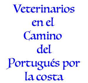 Veterinarios Camino Portugués por la Costa