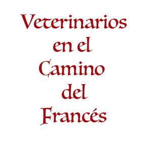 Veterinarios del Camino Francés