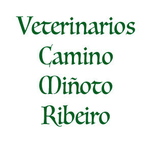 Veterinarios Camino Miñoto Ribeiro