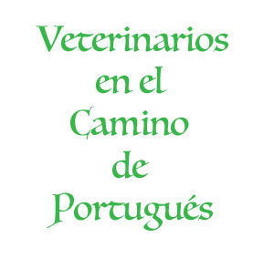 Veterinarios del Camino Portugués